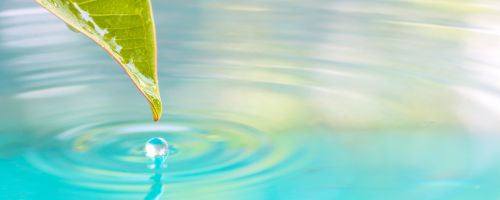 neolysis sostenibilidad desinfección innovación salud